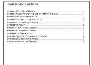 Employee Policy Statements Manual